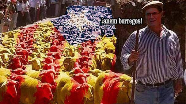 Gobierno de Nicolas Maduro. - Página 6 Borregos-catalanistas