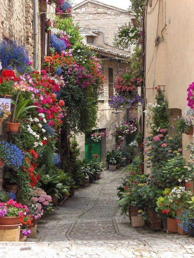 La ciudadela medieval de Asís, Italia