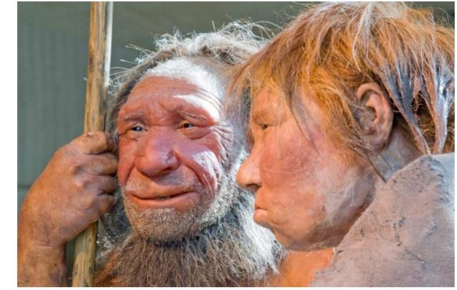 neandertales-consanguinidad-