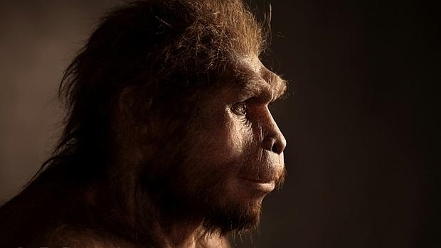 Reconstrucción de un Homo erectus - E. Daynes