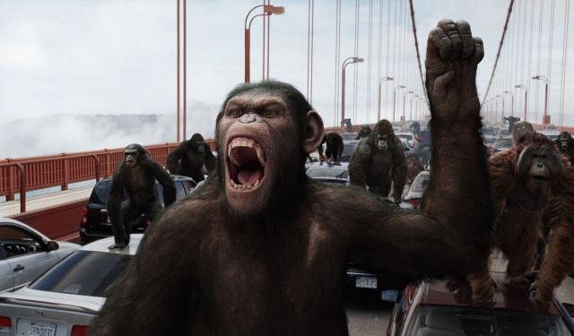 chimp-elretorno